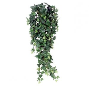 Hedera hangplant 80cm groen