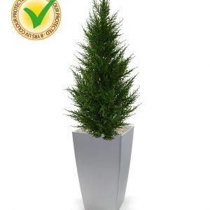 Conifeer kunstplant Deluxe 85 cm UV