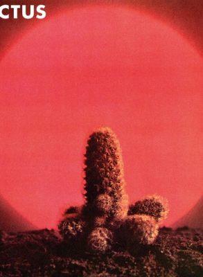 Cactus - LP (8719262001305)
